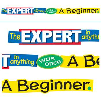 "The Expert "" Anything Was Once A Beginner Banner, T-A25207"