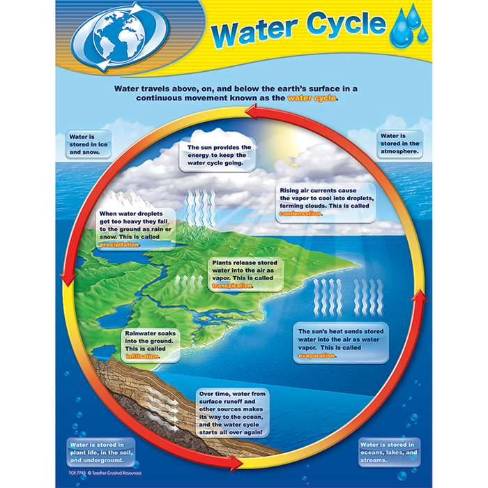 Water Cycle Chart By Teacher Created Resources