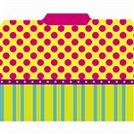 Pink Dots On Stripes File Folders By Top Notch Teacher Products