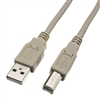 WholesaleCables.com 10U2-02210 10ft USB 2.0 Printer/Device Cable Type A Male to Type B Male