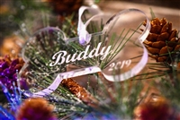 Personalized Acrylic Bone Ornament