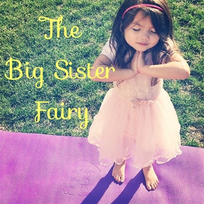 The Big Sister/Big Brother Fairy Package