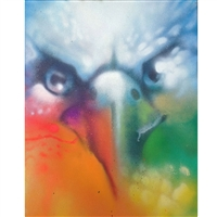 io Hawaiian Hawk Canvas