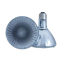 P30-LN | PAR30 Halogen Long Neck Bulbs - Name Brand | USALight.com