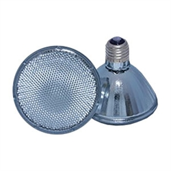 P30-SN | PAR30 Halogen Short Neck Bulbs - Name Brand | USALight.com