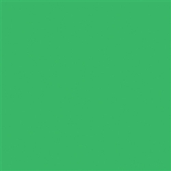 ROSCO CHROMA GREEN #389