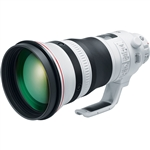 Canon EF 400mm f/2.8L IS III USM Lens
