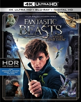 Fantastic Beasts and Where to Find Them 4K (BD/DVD + Digital Copy)