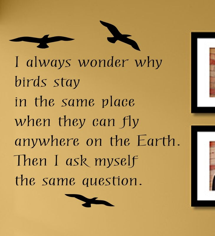I always wonder why birds stay in the same place when they can fly ...