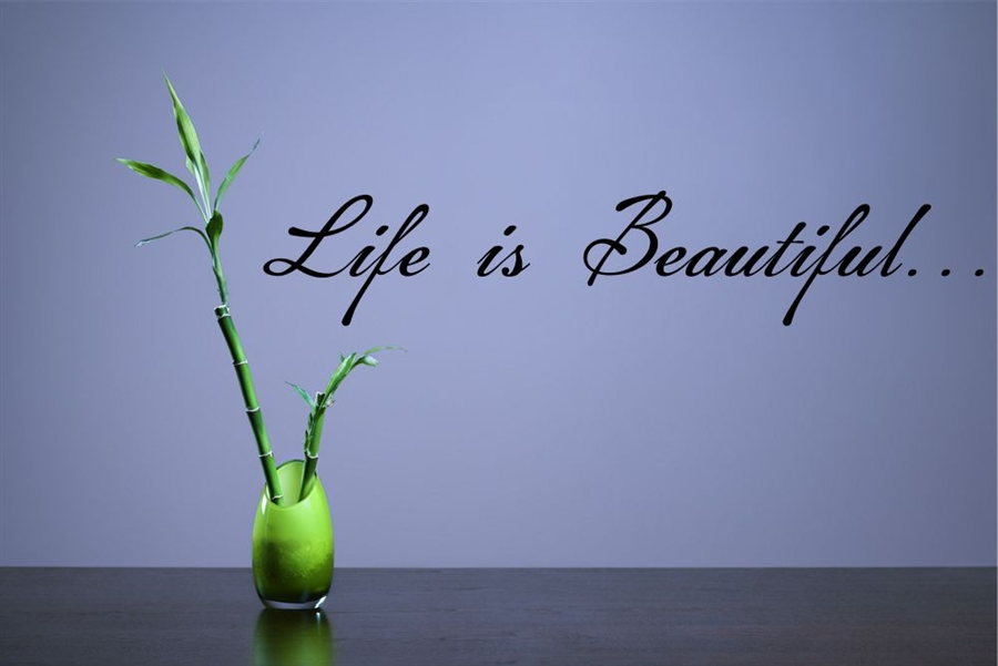 Life is Beautiful Vinyl Wall Art Decal Sticker