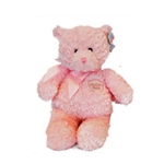 My First Teddy Pink: Medium