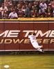 11x14 autographed & authenticated photo, St Louis Cardinals Jim Edmonds