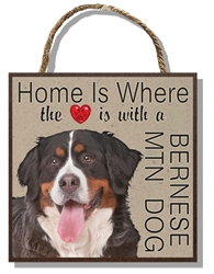 Bernese Mtn Dog Home 60026