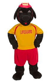 Buddy the Lifeguard Dog Rental