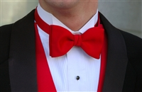 solid bowties