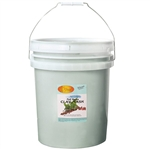 Pedi Clay Mask - Mint & Eucalyptus 5 Gallons (140384)