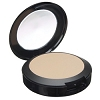 BE PROFESSIONAL Medium Mineral-Based Pressed Powde