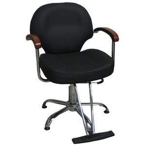 Element Titanium Hydraulic Styling Chair (Ti-22)