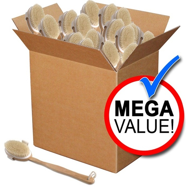 Natural Bristle Brush with Wood Handle Mega Pack of 60 (SA-B4 60)
