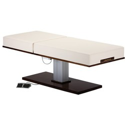LEC Pedestal PowerAssist Facial Back Tilt Electric Lift Table ()