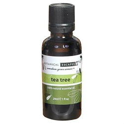 Pure Aromatherapy Essential Oil - Tea Tree - 1 oz. 29.57 mL. (379024)