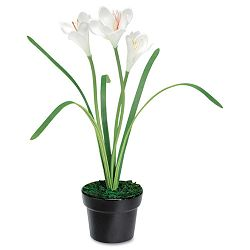"Artificial White Iris in a Black Ceramic Pot 14"" Overall Height (BAU98041)"