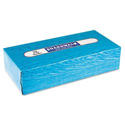 Facial Tissue Flat Box 100 SheetsBox 30 BoxesCarton (BWK6500)