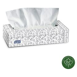 Advanced Extra Soft 2-Ply Facial Tissue 100Box 30 BoxesCarton WE (SCATF6810)