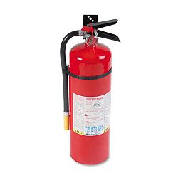 Pro Line Tri-Class Dry Chemical Fire Extinguisher Charge Weight 10 lbs. (KID466204)