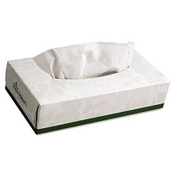 Envision Facial Tissue 100Box 30Carton (GEP47410)