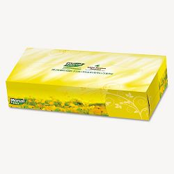 100% Premium Recycled Facial Tissue 100Box 30 BoxesCarton (MRC2930)