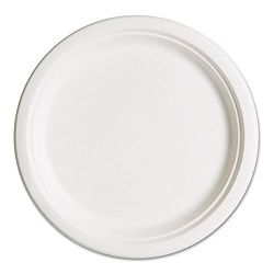 "Compostable Sugarcane Dinnerware 10"" Plate Natural White Pack of 50 (ECOEPP005PK)"