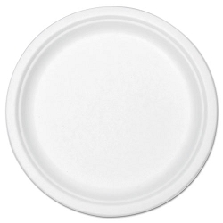 "Compostable Tableware 9"" Plate White Carton of 300 (STMP013R)"