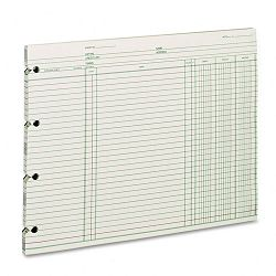 "Accounting 9-14"" x 11-78"" 100 Loose SheetsPack (WLJGN2D)"