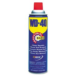 Lubricant Spray 16-oz. Aerosol Can (WDF10116)