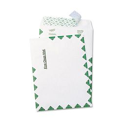 "Tyvek USPS First Class Mailer Side Seam 6"" x 9"" White Box of 100 (QUAR1330)"
