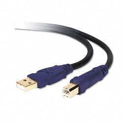 Gold Series High-Speed USB 2.0 Cable 10 ft. BlackBlue (BLKF3U133V10GLD)