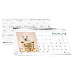 "Kitten Photos Desk Tent Monthly Calendar 8-12"" x 4-14 (HOD3669)"