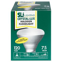 Incandescent Reflector Indoor Floodlight Bulb 75 Watts (SLT15669)