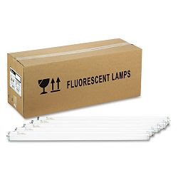 "Fluorescent Tube Bulb 20 Watts T12 24"" Tube Cool White Carton of 6 (SLT19003)"