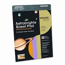 "Astrobrights Easel Pads 25"" x 30-34"" Assorted 30-Sheet 2Carton (WAU25918)"