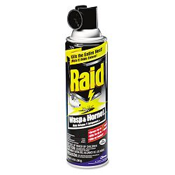 Wasp & Hornet Killer 14-oz. Aerosol Can (DRACB013536)