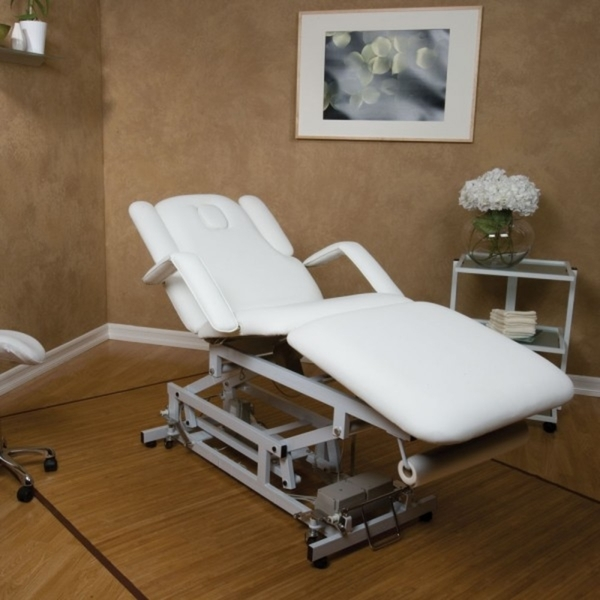 3 Motor Electric Facial And Massage Bed (EF234)