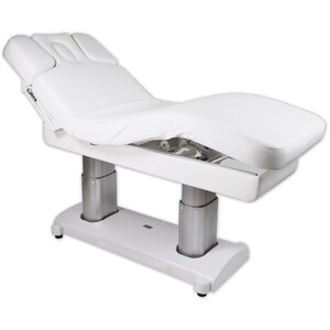 The Ultimate - Electric Massage & Facial Bed (EF239)