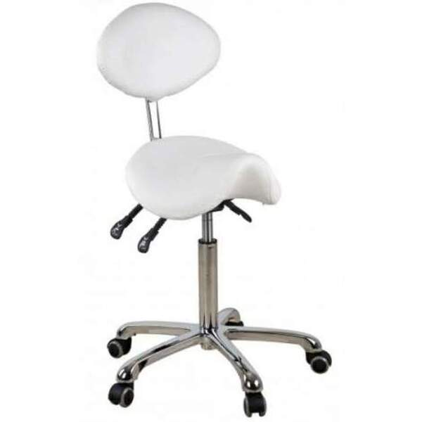 Aleta Saddle Shaped Stool with Backrest (1025)