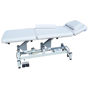 Metta 1-Motor 3-Section Electric All-Purpose Bed (2212B)
