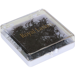 QL Royal Lashes - 5 Strands 1000 Pieces - White Box (6350)