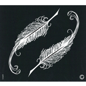 G Body Art - Essential Stencils - 2 Per Pack - Quills ()