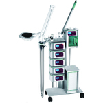 Aesthetic System P-8 / 7-in-1 Multifunction Machine - High Frequency + Rotary Brush + Galvanic  + Spray Diffuser + Vacuum Extractor + Steamer + Hot Towel Cabi + Ultrasonic + Dermal Scrubber + Mag Lamp by Essai <font color=FFFFFF>(ES3537)</font>