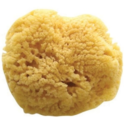 Natural Sea Sponge (SP-58210)